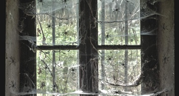 halloween spiderwebs decor