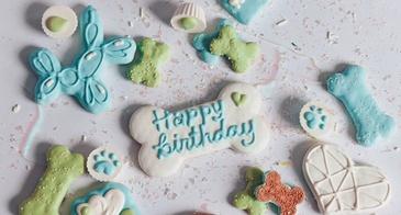 dog treat cookie box