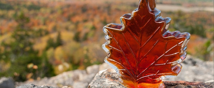 Maple Syrup With Foliage in the Background