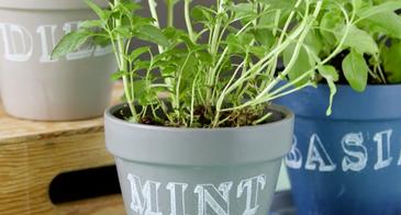 herb planters