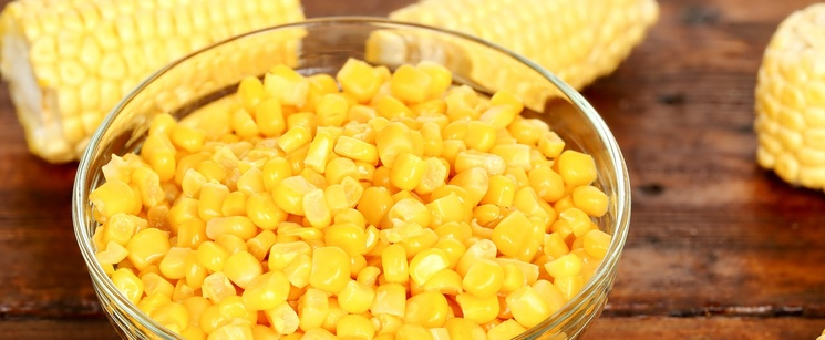Bowl of corn kernels on a brown table with corn on the cob beside the bowl.